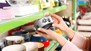 数多くある餌入れの中から猫に合った器を探している飼い主