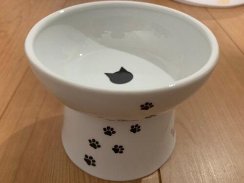 猫壱のお皿を側面から見た写真