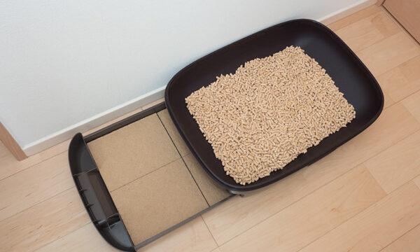 システムトイレを部屋の床に広げておいている