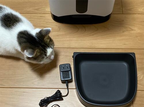 電源アダプタを嗅いでる猫