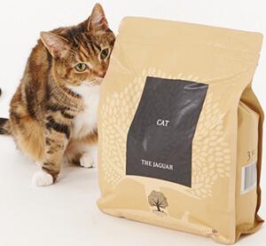 茶封筒色のパッケージのキャットフードジャガーのニオイを嗅いでいる雑種の猫
